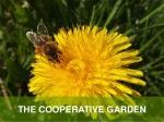 cooperative garden
